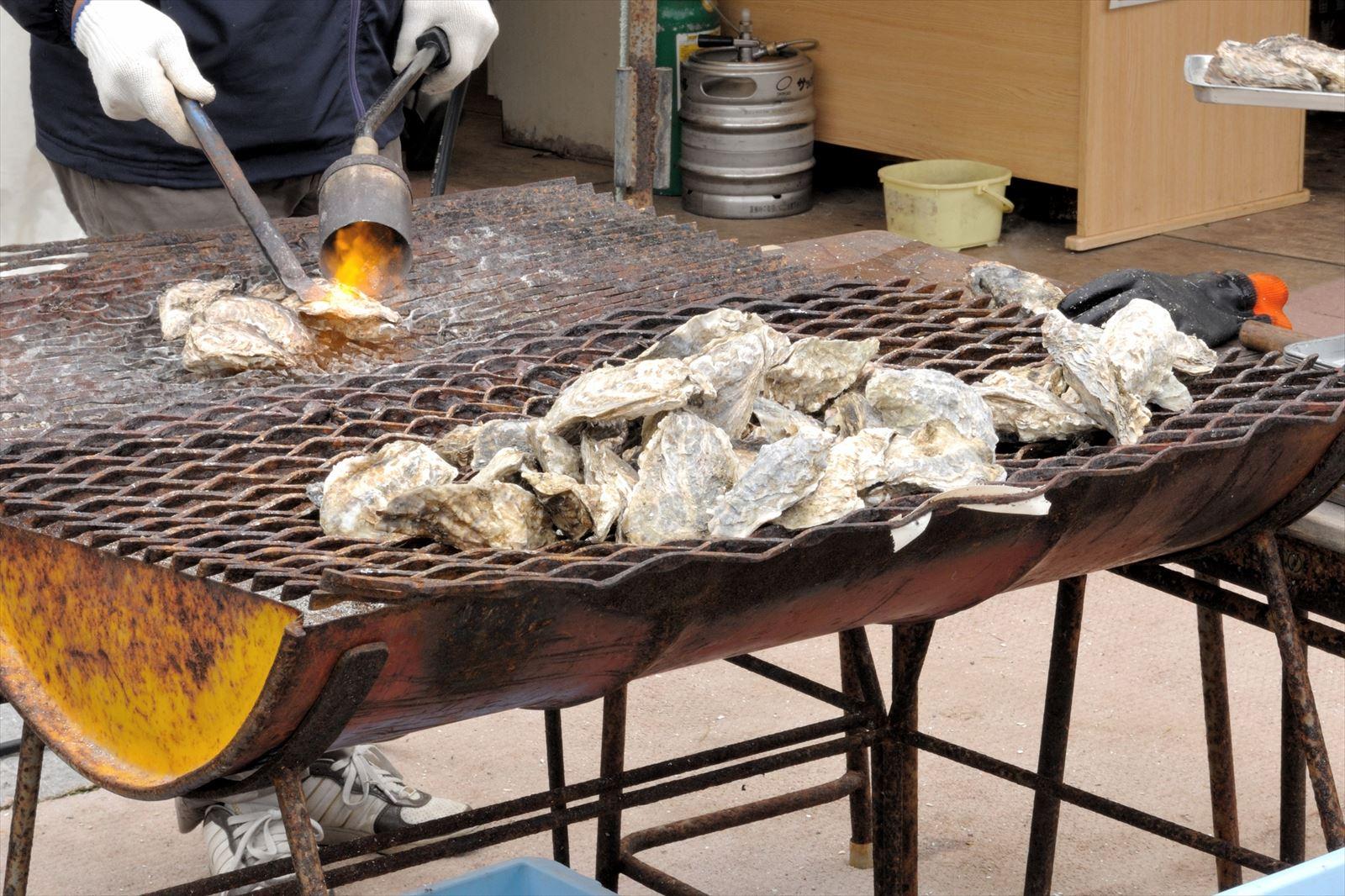あっけし桜 牡蠣祭り