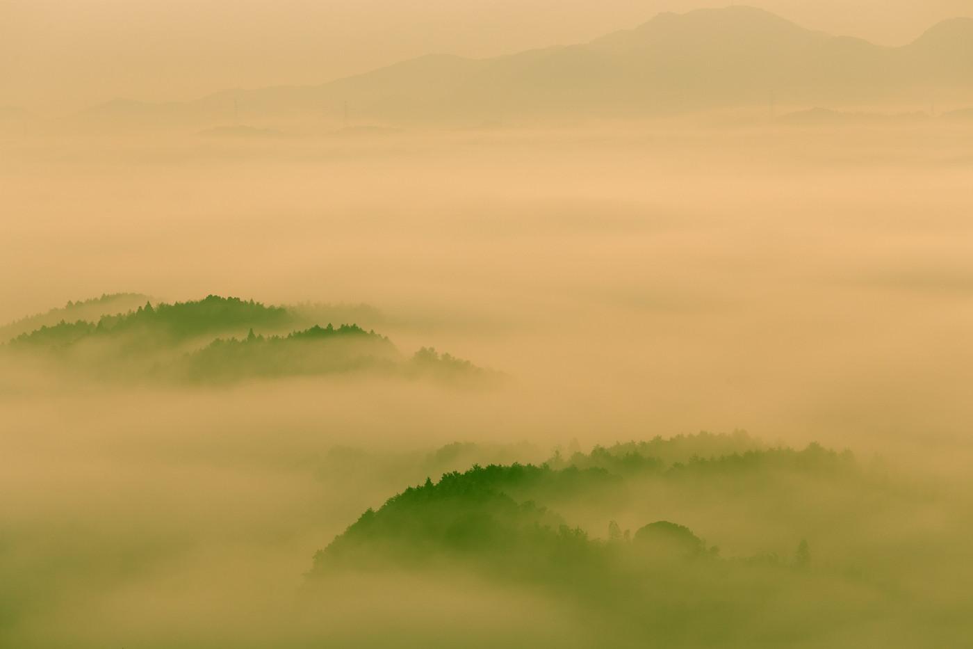 清水寺の雲海