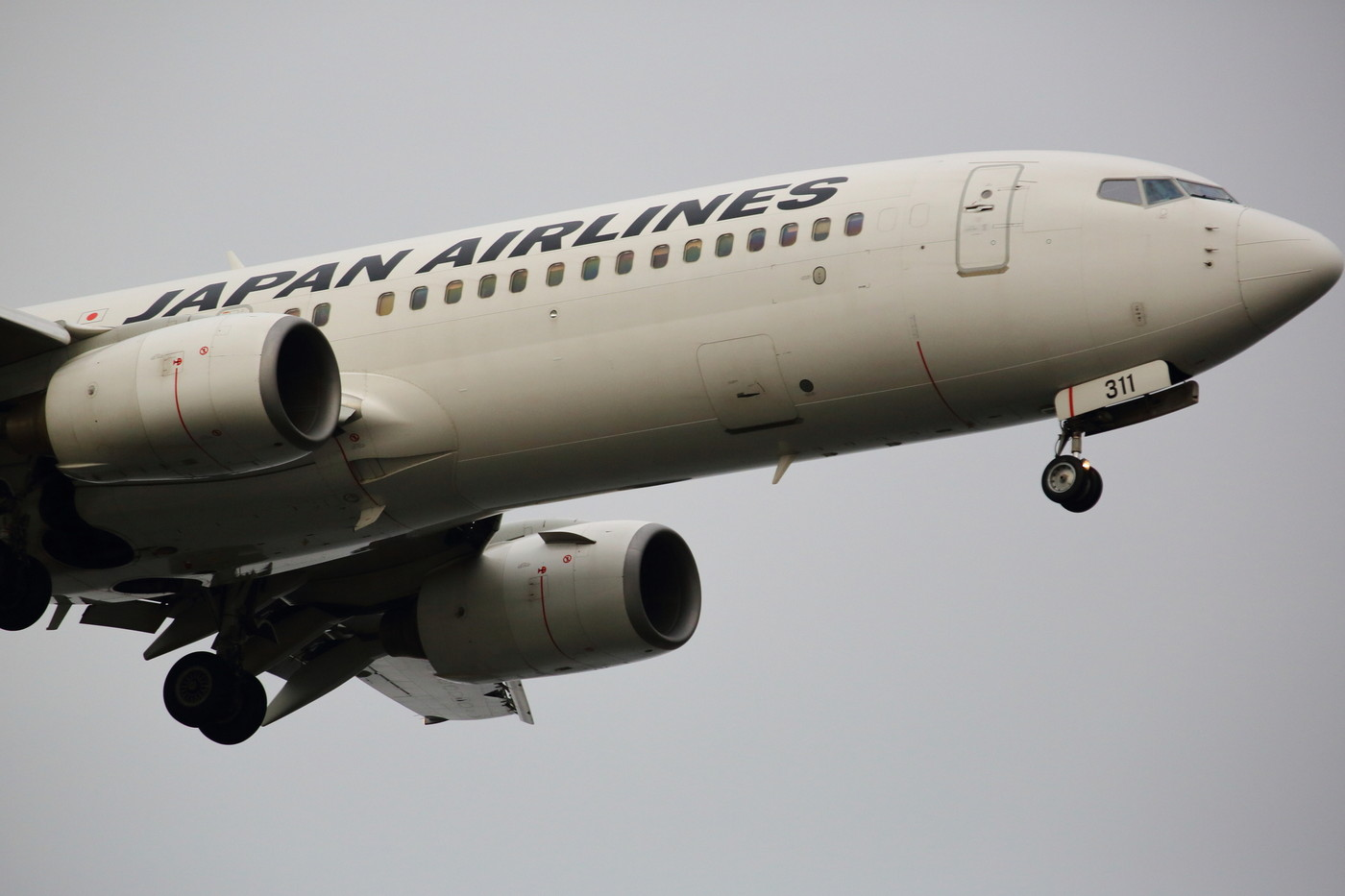 JALの飛行機の画像