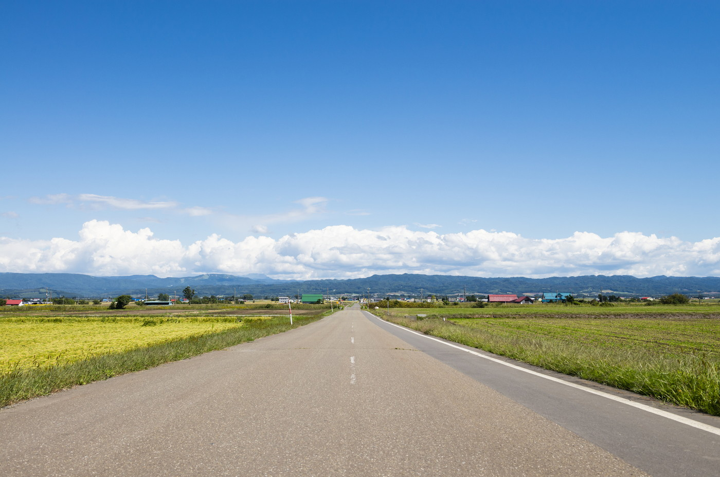 北海道の画像
