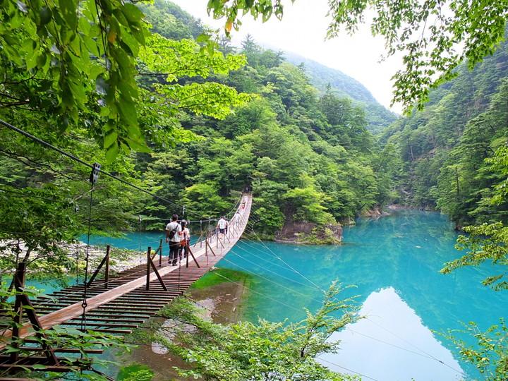 夢の吊橋(静岡県)