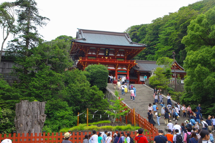 鎌倉散策(神奈川県)