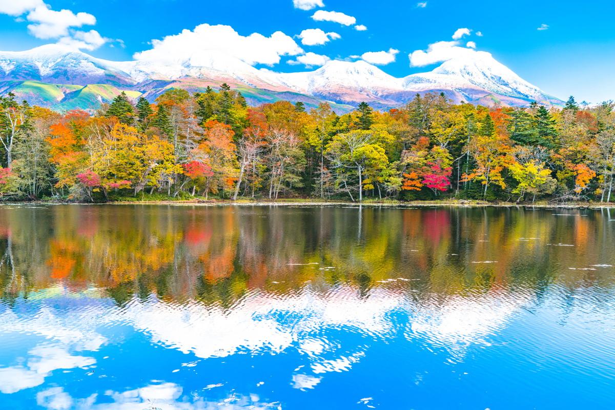 豊かな自然が広がる!知床五湖の...