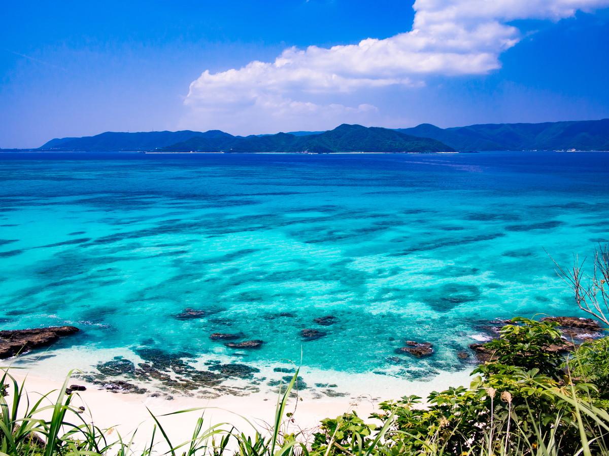 海とマングローブに囲まれた島!...